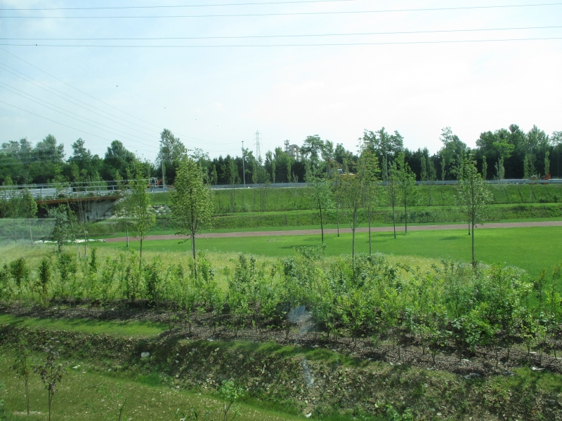 terreno pulito e recintato con rete metallica